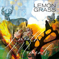Lemongrass - Smooth Moments