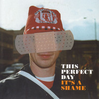 This Perfect Day - It's A Shame