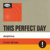This Perfect Day - Dolphins
