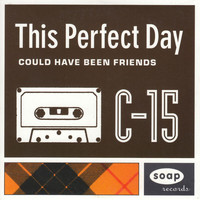 This Perfect Day - Could Have Been Friends