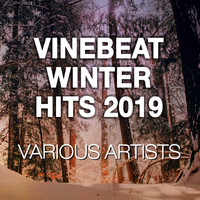 Various Artists / - VineBeat Winter Hits 2019