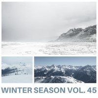 Various Artists - Winter Season Vol. 45