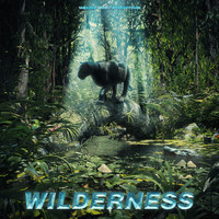 Amadea Music Productions - Wilderness