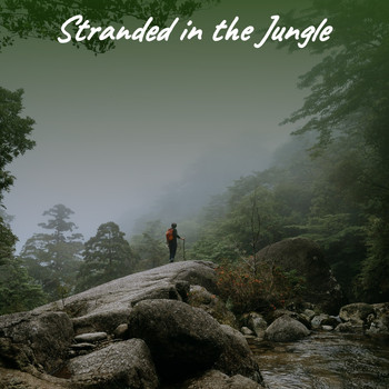 Various Artists - Stranded in the Jungle