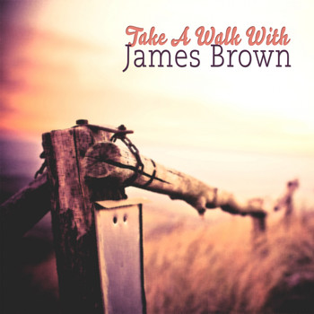 James Brown - Take A Walk With