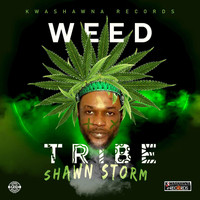 Shawn Storm - Weed Tribe