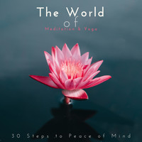 Mindfulness Meditation Music Spa Maestro - The World of Meditation & Yoga: 30 Steps to Peace of Mind
