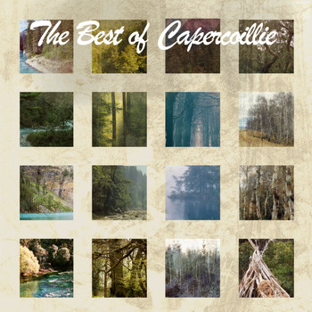 Capercaillie - The Best Of Capercaillie