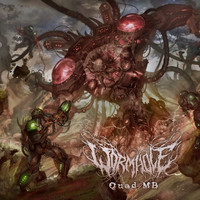 Wormhole - Quad Mb