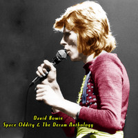David Bowie - Space Oddity & the Deram Anthology (Explicit)