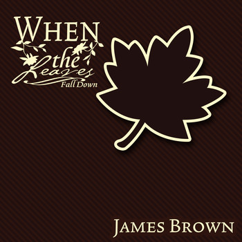 James Brown - When The Leaves Fall Down