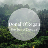 Donal O'Regan - The Star of Donegal