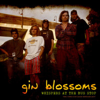 Gin Blossoms - Whispers At The Bus Stop (Live 1993)