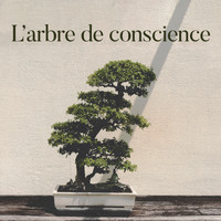 Meditation Music Zone - L'arbre de conscience