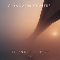 Cinnamon Chasers - Thunder / Spice (2.0)