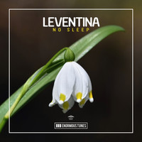 Leventina - No Sleep