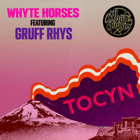 Whyte Horses - Tocyn