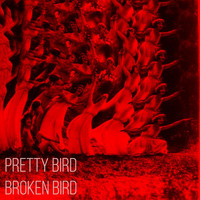 Dead Bed Bad - Pretty Bird, Broken Bird