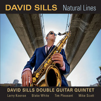 David Sills Double Guitar Quintet - Natural Lines