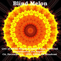 Blind Melon - Live at KROQ Almost Acoustic Xmas, Universal Amphitheater, Los Angeles, CA. December 12th 1993, KROQ-FM Broadcast (Remastered)