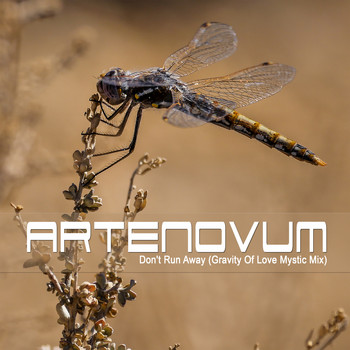 Artenovum - Don't Run Away (Gravity of Love Mystic Mix)