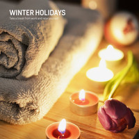 Various Artists - Winter Holidays (Take a break from work and relax yourself)