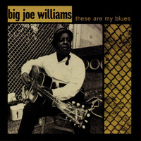 Big Joe Williams - These Are My Blues (Live)