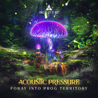 Acoustic Pressure - Foray Into Prog Territory