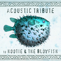 Guitar Tribute Players - Acoustic Tribute to Hootie & The Blowfish (Instrumental)