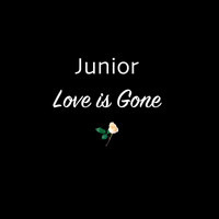 Junior - Love Is Gone