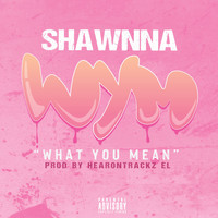 Shawnna - What You Mean (Explicit)