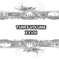 Various Artists - Tunes, Vol. XXVIII