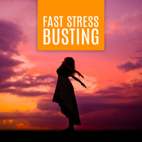 Mindfulness Meditation Music Spa Maestro - Fast Stress Busting: Meditation Music for Bliss and Tranquility & Boost Your Mood