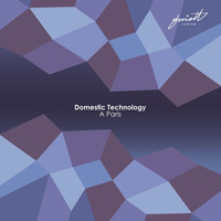 Domestic Technology - A Paris