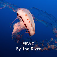 FEWZ / - By The River