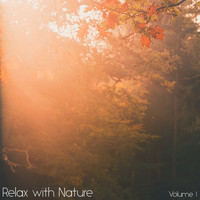 Sounds of Nature White Noise for Mindfulness Meditation and Relaxation, Relaxing Mindfulness Meditation Relaxation Maestro, Sounds of Nature White Noise Sound Effects - Relax with Nature, Vol. 1