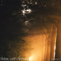 Sounds of Nature White Noise for Mindfulness Meditation and Relaxation, Relaxing Mindfulness Meditation Relaxation Maestro, Sounds of Nature White Noise Sound Effects - Relax with Nature, Vol. 2