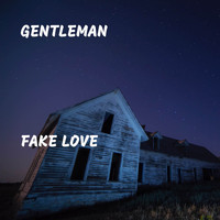 Gentleman - Fake Love (Explicit)