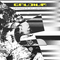Gaudium - Fragments of Insanity