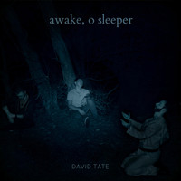 David Tate - Awake, O Sleeper