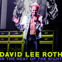 David Lee Roth - In The Heat of the Night (Live 1994)