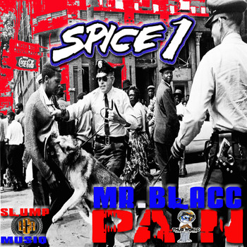 SPICE 1 - Pain (feat. Mr. Blacc & Slump Musiq) (Explicit)