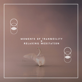 Relaxing Chill Out Music - Moments Of Tranquility x Relaxing Meditation
