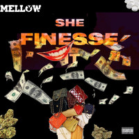 Mellow - She fines$e It (Explicit)