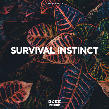 Various Artists - Survival Instinct