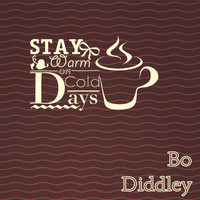 Bo Diddley - Stay Warm On Cold Days