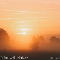Sounds of Nature White Noise for Mindfulness Meditation and Relaxation, Relaxing Mindfulness Meditation Relaxation Maestro, Sounds of Nature White Noise Sound Effects - Relax with Nature, Vol. 3