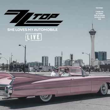 ZZ Top - She Loves My Automobile (Live)