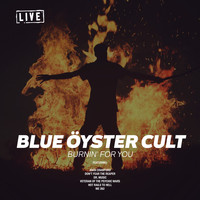 Blue Oyster Cult - Burnin' For You (Live)