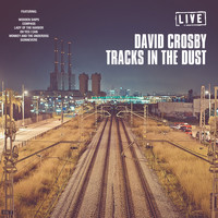 David Crosby - Tracks In The Dust (Live)